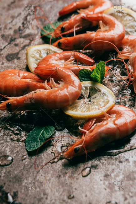 Closeup view of shrimps, lemon slices and mint leaves with melting ice