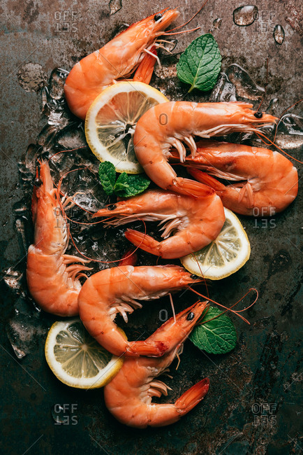 Top view of shrimps, lemon slices and mint leaves with melting ice