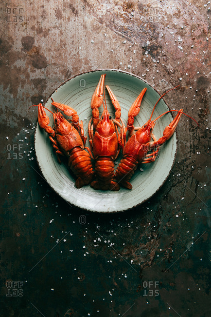 Elevated view of three crayfishes on plate on rustic table with salt