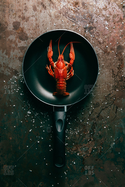 Top view of frying pan with crayfish on grungy tabletop with salt