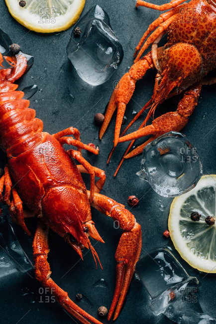 Closeup view of crayfishes, lemon slices, black pepper and ice cubes on table