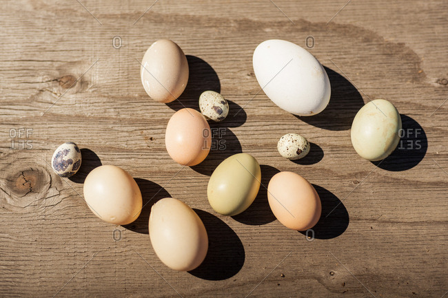 Variety of eggs on wooden background