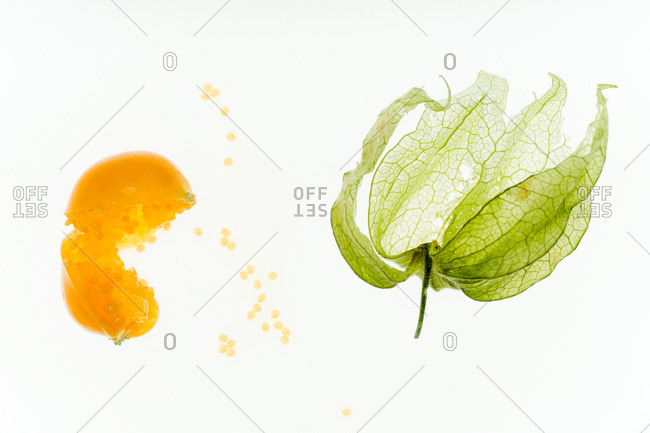 Smashed physalis berry and flower backlit on white background