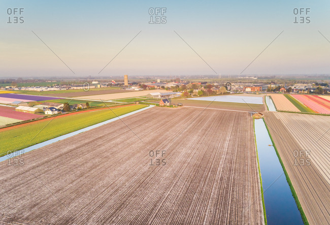 Aerial view of beautiful flower fields in Lisse, Netherlands