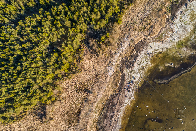 Aerial view of algal bloom in the sea on the shore of Vormsi island in Estonia