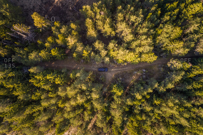Aerial view of black car driving through the forest on dirt road in Forby on Vormsi island, Estonia