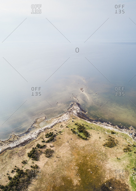 Aerial view of coastline surrounded  by sea full of algae in Estonia