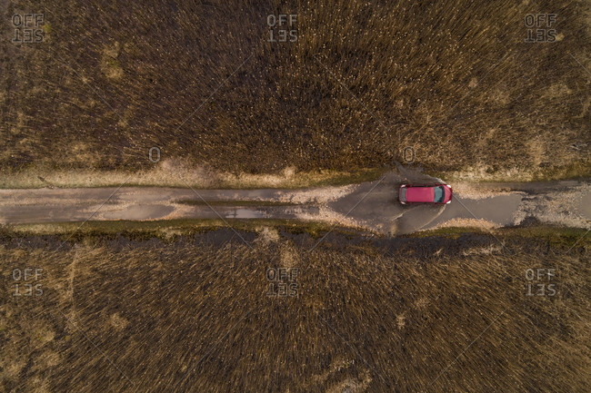 Aerial view of red car driving through puddle on the dirt road surrounded by reed in Estonia