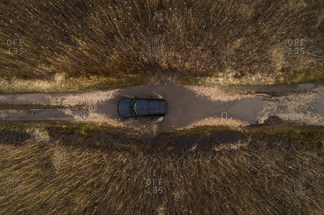 Aerial view of black car driving through puddle on the dirt road surrounded by reed in Estonia
