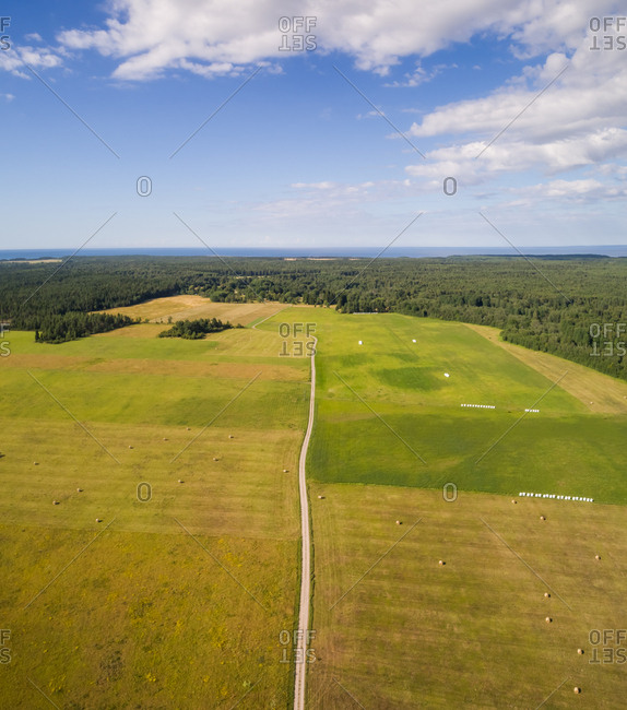 Aerial view of empty road in the middle of farmland on the island of Vormsi in Estonia.