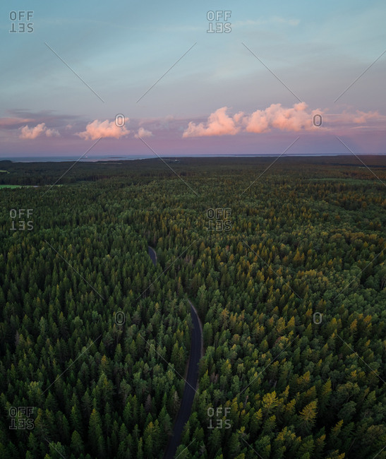 Aerial view of empty road in the middle of forest at sunset on the island of Vormsi in Estonia