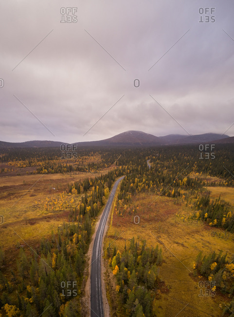 Aerial view of empty road crossing a colorful forest on a cloudy day in Finland