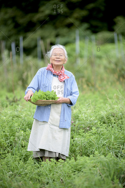 Elderly woman with grey hair standing in a garden, holding basket with fresh vegetables, smiling at camera