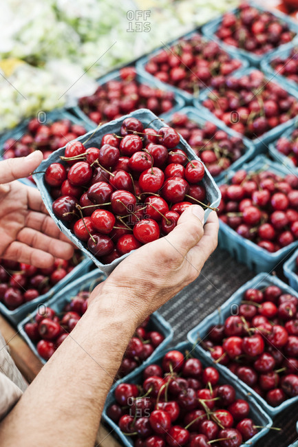 High angle  close up of person holding punnet with fresh red cherries at a fruit and vegetable market