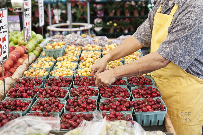 Man wearing apron standing at stall with punnets of fresh cherries at a fruit and vegetable market