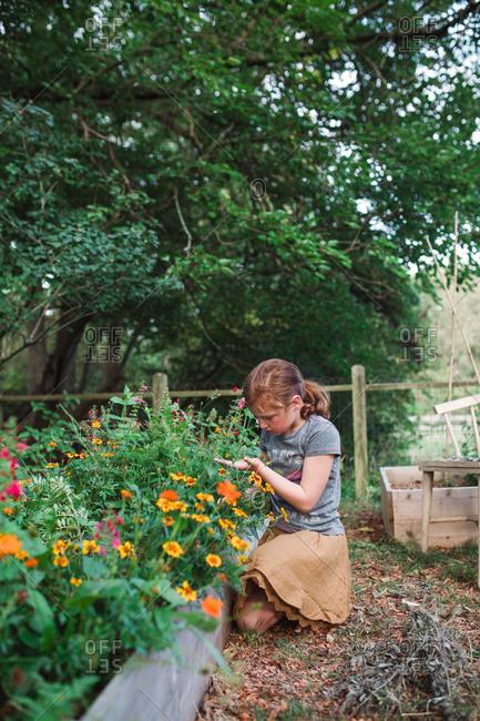 Preteen girl kneeling at outdoor flowerbed