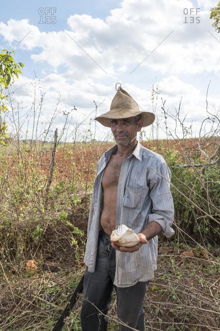 Vinales, Cuba - February 24, 2015: Portrait of farmer holding machete and piece of coconut