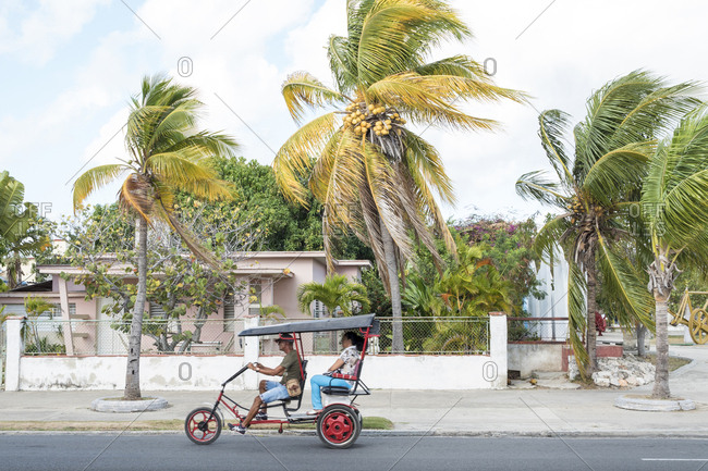Cienfuegos, Cuba - February 26, 2015: Passenger riding in bicycle rickshaw with wind blowing coconut trees in background