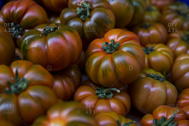 Fresh Beefsteak tomatoes for sale at a market stall in Bologna, Italy.