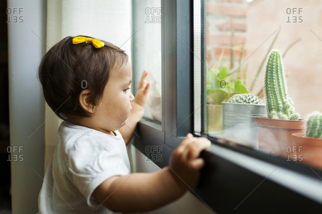 Baby looking out window at potted cacti plants