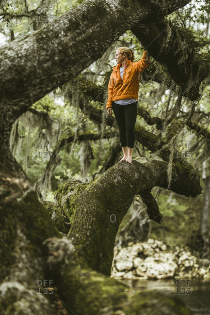 Young woman standing on mossy branch at rainforest