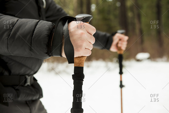Midsection of male hiker holding hiking poles in snow covered forest