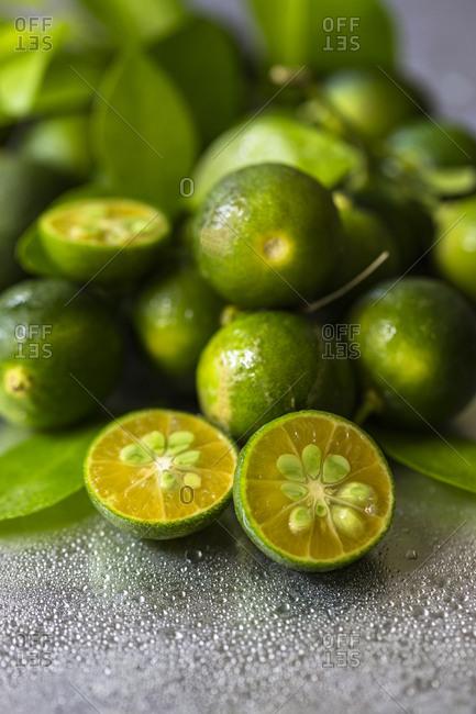 Calamansi, Philippine lime