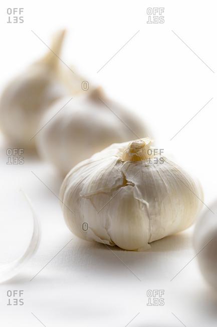 Beautiful garlic bulb with wisp of peel