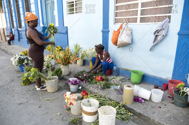 Havana, Cuba - March 08, 2015: Women arranging cut flowers into bouquets before selling them on sidewalk
