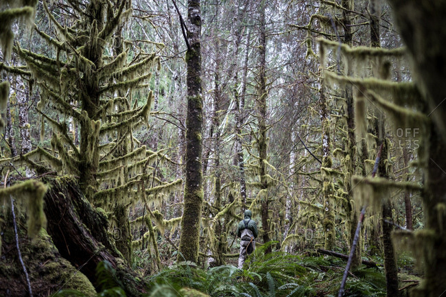 Rearview of fisherman hiking through dense forest to get to secluded spot on river