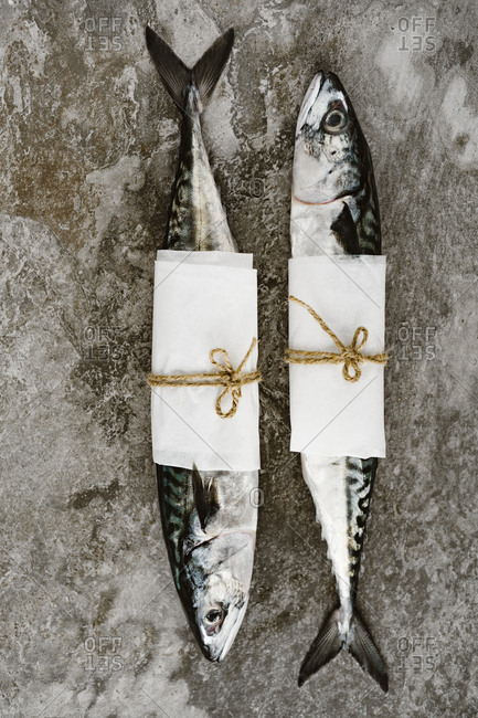 Two whole fish wrapped in parchment paper lying side by side on kitchen counter