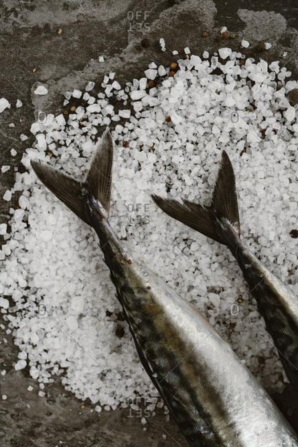 Tails of two fish over coarsely ground salt