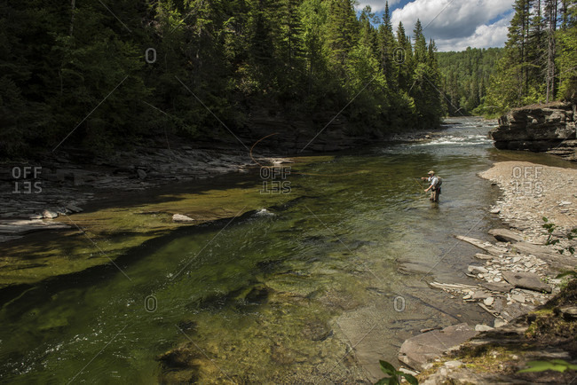 Fly fisherman fishing in York River, Gaspe, Quebec, Canada