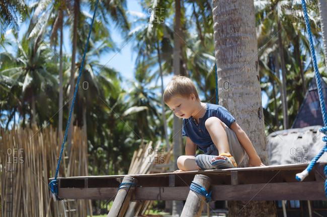 Portrait of boy under palms
