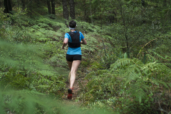 Rear view of mature woman trail running through forest, Rancho Santa Elena, Hidalgo, Mexico