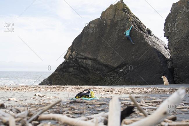 Rear view of lone woman rock climbing on beach, Klamath, California, USA