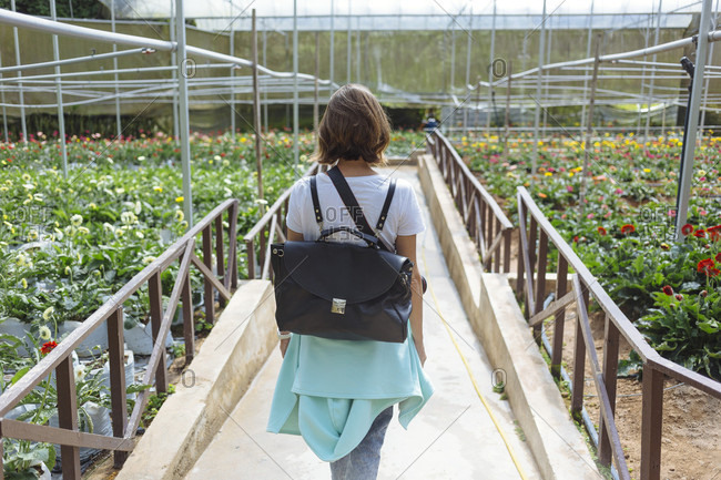 Young woman in greenhouse, Cameron highlands, Malaysia