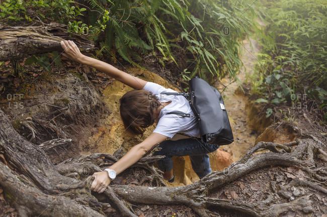 Young hiker, Cameron Highlands, Malaysia