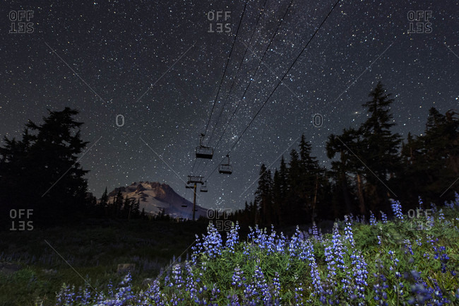 Mount Hood under clear sky at night with milky way and wild flowers, Oregon, USA