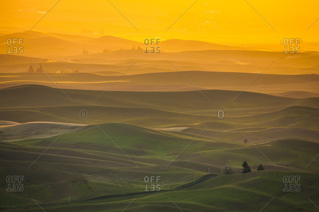 Scenery with rolling hills at sunrise, Steptoe Butte State Park, Palouse, Washington State, USA