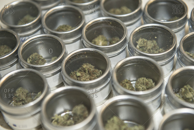 Legal marijuana in a store in Washington State