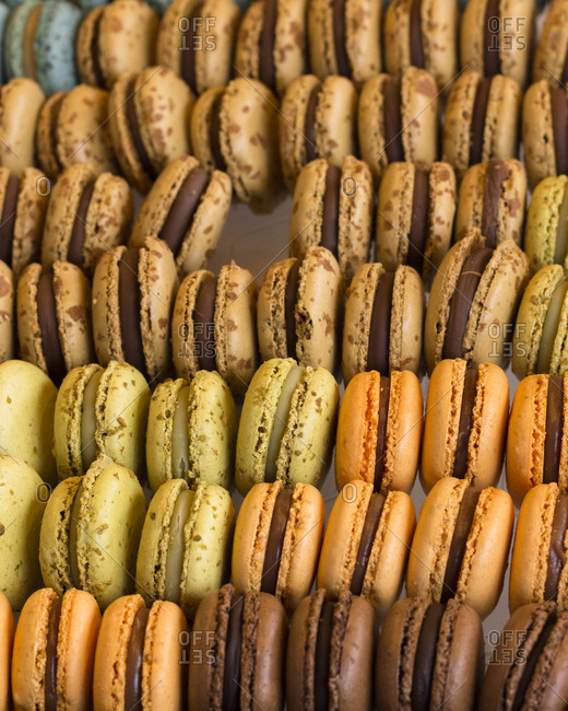 Assorted macarons in a shop