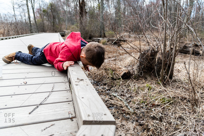 Little boy looking over edge of wooden dock