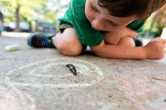 Young boy looking at slug in a driveway