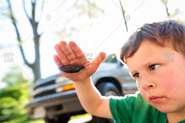 Young boy holding and looking at a slug