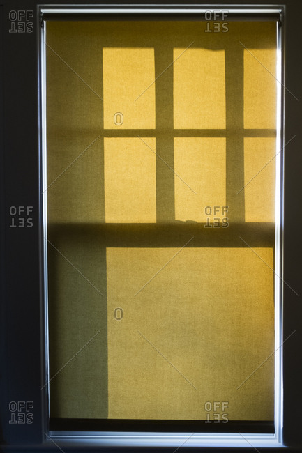Window with closed shutter