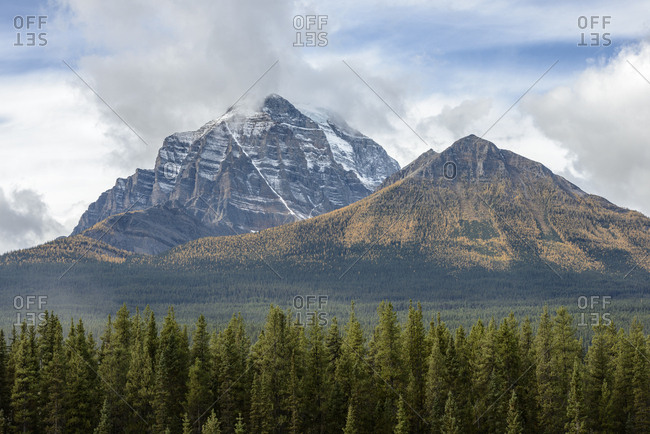 Canada, Alberta, Banff, Forest and snowcapped mountains in Banff National Park