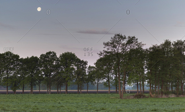 Rural landscape at dawn with moon in the sky.