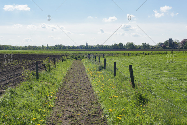 Idyllic dutch rural landscape with path in meadow during spring.
