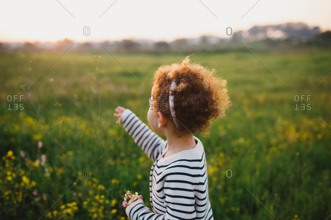 A girl reaching out to pick a flower in a green field